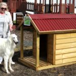 Luxury Dog Kennel Medium